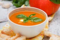 Kräm- soup för pumpa Royaltyfri Bild