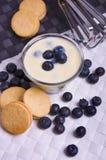 kräm- yoghurt för blåbär Arkivfoto