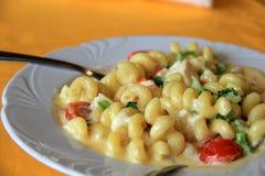 Krämig höna och pasta kvävde i ostsås Royaltyfri Foto