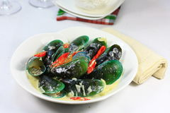 Krämig mussle Fotografering för Bildbyråer