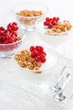 Krämig pannacotta med bär och granola, lodlinje Royaltyfria Bilder