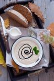 Krämig soppa för höst Royaltyfri Fotografi