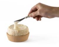Krämig spansk ost Arkivfoton