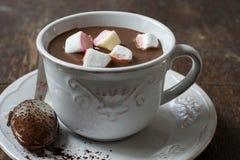 Krämig varm kakao och marshmallower arkivbild