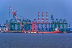Kräne auf Dockside des Handelshafens stockfoto