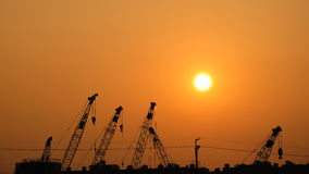 Kräne auf Sonnenuntergang Lizenzfreies Stockbild