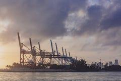 Kräne des Hafens von Miami und der Skyline von im Stadtzentrum gelegenem Miami an der Sonne lizenzfreie stockfotos