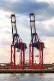 Kräne für Behälter im Hamburgerhafen stockbild