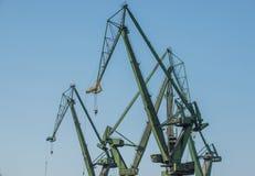Kräne in Gdansk Lizenzfreies Stockfoto