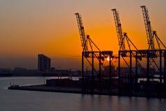 Kräne im Hafen bei dem Sonnenuntergang, Durban Südafrika Stockfotografie