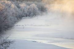 Kräne im Nebel Stockfotografie
