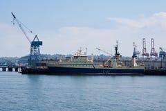 Kräne im Seattle-Hafen lizenzfreie stockfotografie