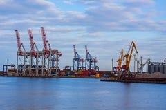 Kräne im Seehafen Lizenzfreies Stockfoto