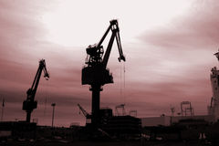 Kräne im Sonnenuntergang Stockfotografie
