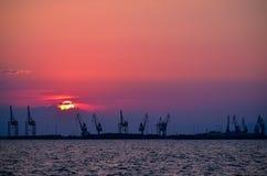 Kräne am Sonnenuntergang Lizenzfreie Stockbilder