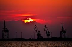 Kräne am Sonnenuntergang Lizenzfreie Stockfotos