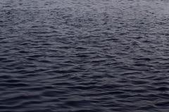 Kräuselung auf der Oberfläche des Wassers stockfotografie