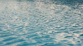 Kräuselungen auf dem Wasser im Pool stock footage