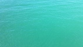 Kräuselungen auf der Seeoberfläche stock video