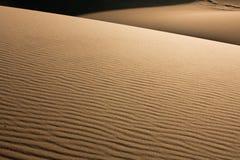 Kräuselungen auf Sanddünen Stockbild