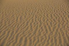 Kräuselungen des frühen Morgens im Wüstensand lizenzfreies stockbild