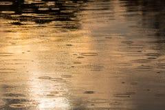 Kräuselungen geschaffen durch fallenden Regen in einem wilden Fluss Stockbilder