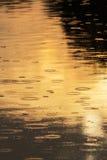 Kräuselungen geschaffen durch fallenden Regen in einem wilden Fluss Lizenzfreies Stockbild