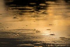 Kräuselungen geschaffen durch fallenden Regen in einem wilden Fluss Stockfotografie