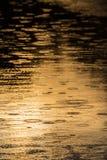 Kräuselungen geschaffen durch fallenden Regen in einem wilden Fluss Lizenzfreies Stockfoto