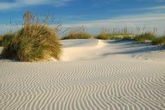 Kräuselungen im Sand Lizenzfreie Stockfotografie