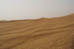 Kräuselungen im Wüstensand lizenzfreie stockbilder