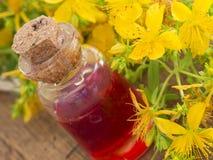 Kräuteröl gemacht vom Johanniskraut Stockfotos