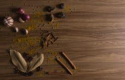 kräuter Stockbild