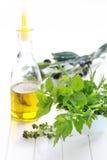 Kräuter mit Olivenöl Stockfoto