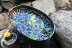 Kräuter- und Beerentee im Lager Kampierender Tee des Geißblattes in einer authentischen Sommerküche des Topfes stockfoto