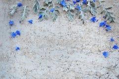 Kräuter und Blumen auf Weinlesehintergrund Stockfotografie
