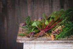 Kräuter und Gemüse Lizenzfreies Stockfoto