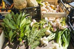 Kräuter und Gemüse auf einem Markt klemmt in Paris, Frankreich fest Stockbilder