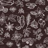 Kräuter und Gewürz-Skizzen-Muster Stockbilder