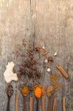 Kräuter und Gewürze auf einem hölzernen Brett Gewürz-Löffel lizenzfreies stockbild