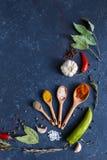 Kräuter und Gewürze auf Messlöffel des schwarzen Hintergrund Nahrungsmittelhintergrundes Gewürzlöffellorbeer Kopienraum lizenzfreies stockbild