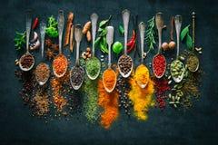 Kräuter und Gewürze für das Kochen auf dunklem Hintergrund stockfotografie