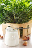 Kräuter und Joghurt. Stockbilder