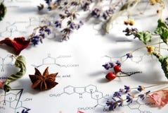 Kräuter und Wissenschaft Stockbild