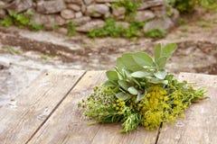 Kräuterblumenstrauß Lizenzfreie Stockbilder