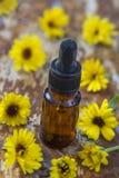 Kräutermedizin Calendula Wesentliches Aromaöl mit Calendula blüht auf hölzernem Hintergrund Lizenzfreie Stockfotografie