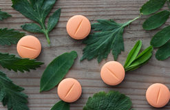 Kräutermedizinkonzept, -pillen und -anlagen Lizenzfreies Stockfoto