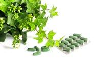Kräutermedizinpillen mit Grünpflanze auf weißem Hintergrund Stockfotos
