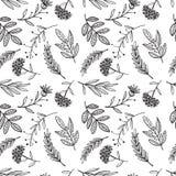 Kräuterskizze, Detox Nahtloser Musterentwurf lizenzfreie abbildung