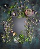 Kräutertee auf weißem Hintergrund Verschiedene frische Kräuter, Teewerkzeuge und Tasse Tee auf dunklem Weinlesehintergrund, Rahme lizenzfreie stockbilder